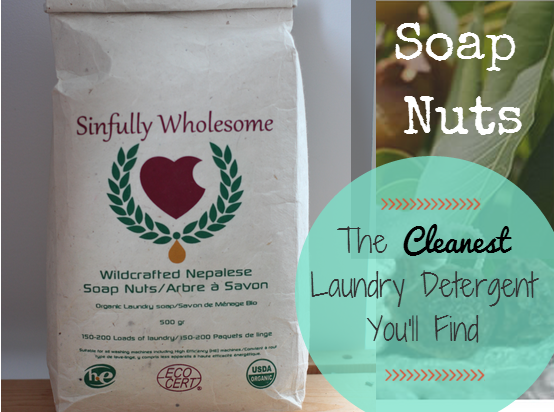 Introducing Soap Nuts – the Cleanest Laundry Detergent for Eczema